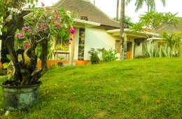 Nice clean affordable luxury hotel Kuta Lombok Trevligt rent prisvärt lyx hotell Nyaman bersih harga terjangkau